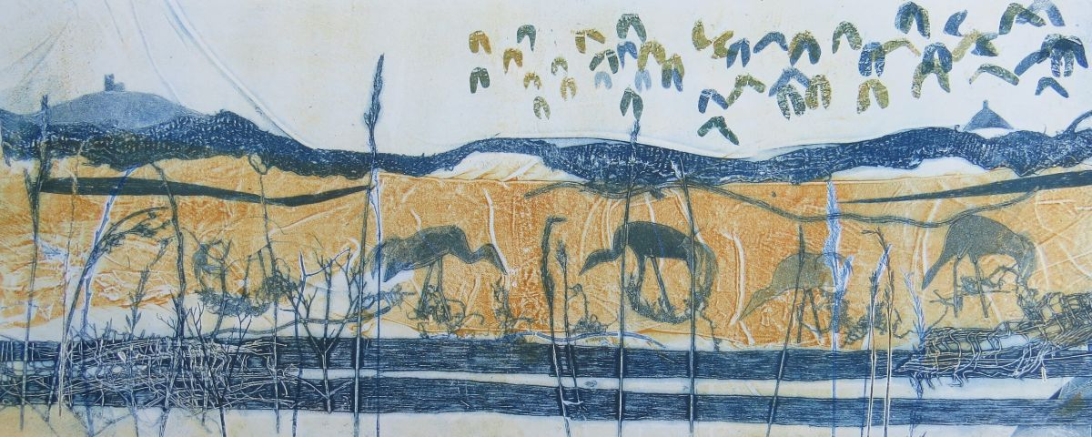 Reedbeds and Waterways - an exhibition by printmaker Jackie Curtis