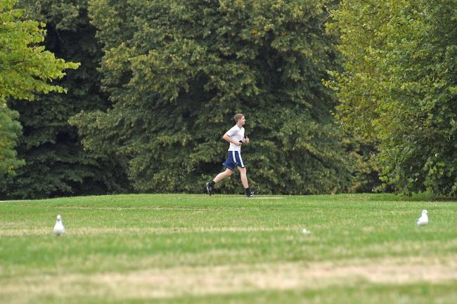 A jogger in a park