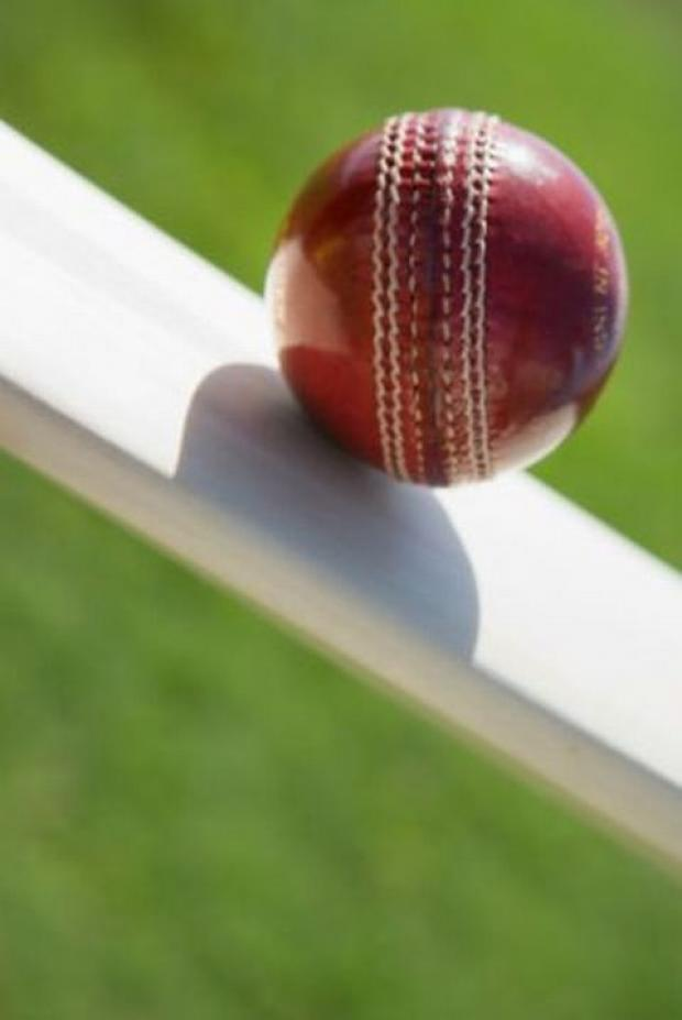 CRICKET: Overton twins prepare for South African trip