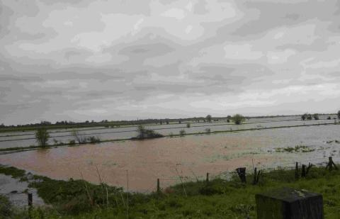 Chard & Ilminster News: Flooding near North Curry, Taunton. Photo: stock image.