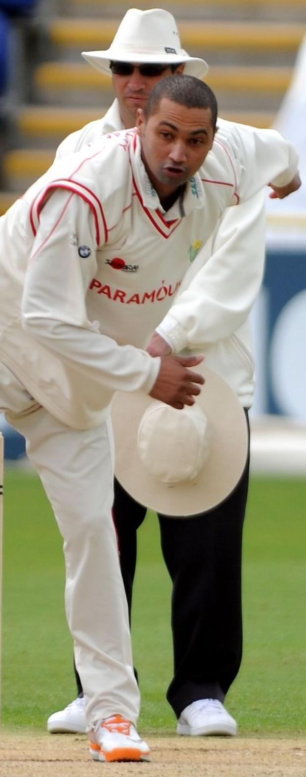 CRICKET: Alviro Petersen boost for Somerset