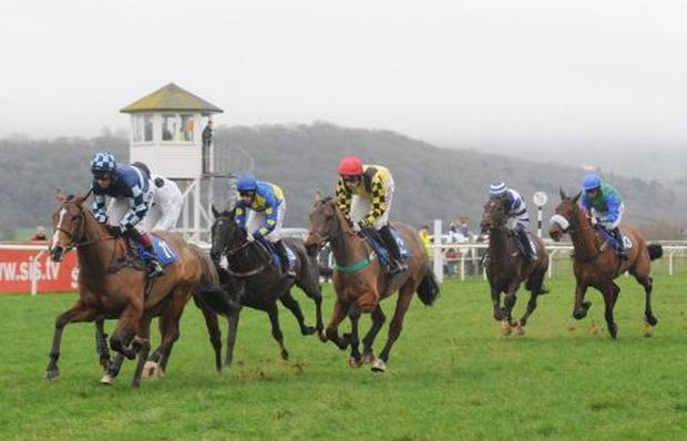 HORSE RACING: Taunton race again on Monday