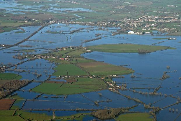 Chard & Ilminster News: ART will reflect the reality of the flooded Levels