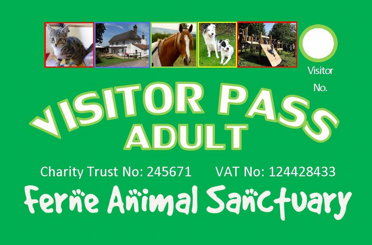 Winter opening hours and new visitor passes at Ferne Animal Sanctuary