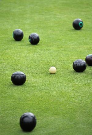 BOWLS: New mats for Donyatt at presentation evening