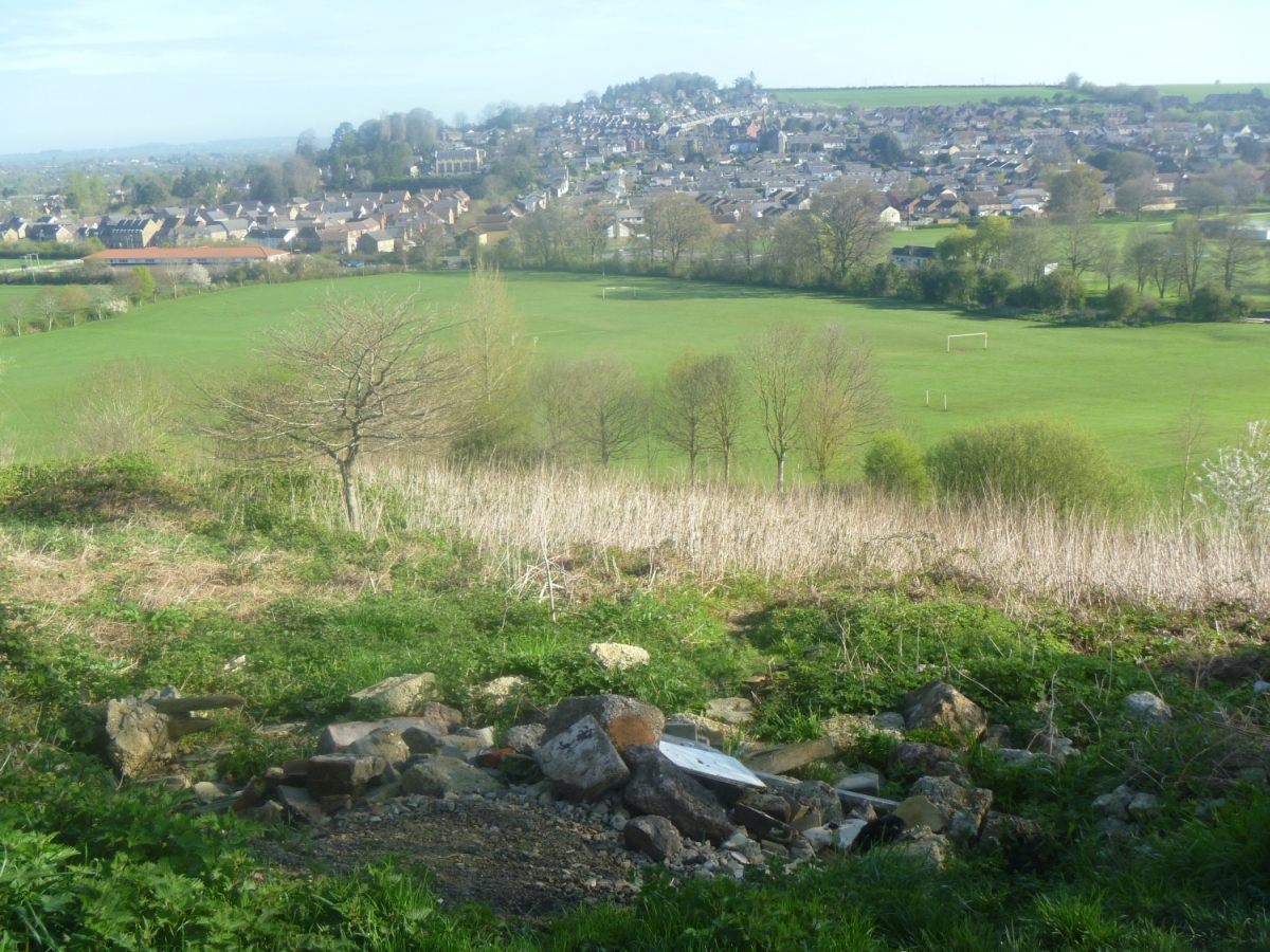 Anger at 'damage' to Herne Hill in Ilminster
