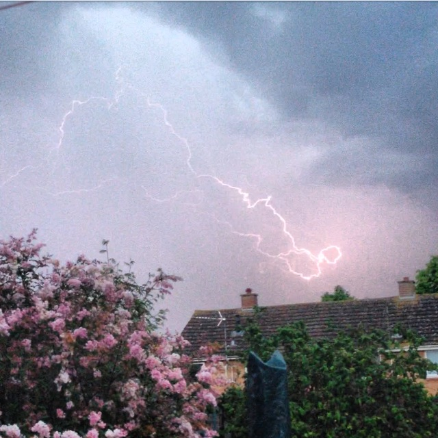 Chard & Ilminster News: Photo by Emma Eggbeer