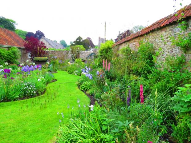 Open garden event at Whitestaunton in aid of St Margaret's Hospice