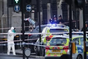 Business as usual after Westminster terror attack as seven are held in raids