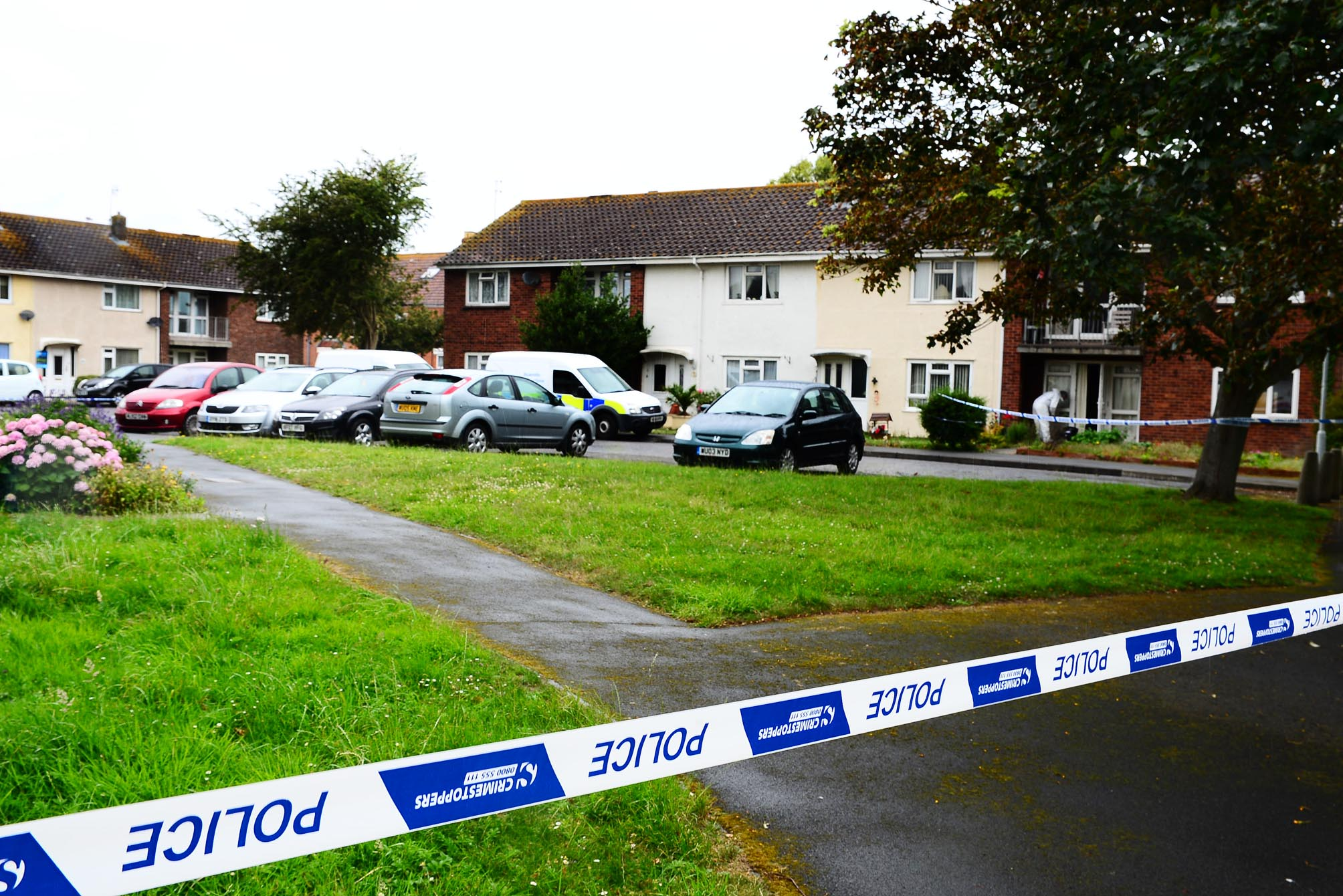 A killer who stabbed a rival drug dealer to death during a fight at a house in Burnham-on-Sea was allegedly driven away from the scene just before police arrived at the scene