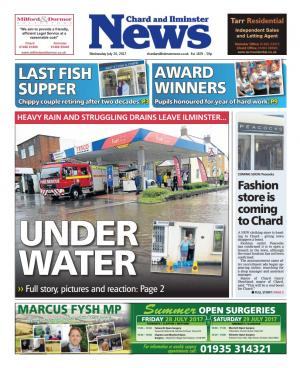 Chard & Ilminster News: UNDER WATER: Flooding hits Ilminster