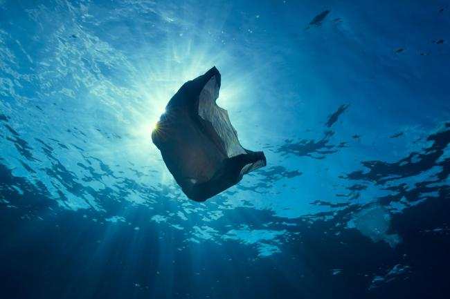 PLASTICS BAN: The BBC's Blue Planet II series highlighted the issue of marine plastic pollution (BBC NHU/PA)