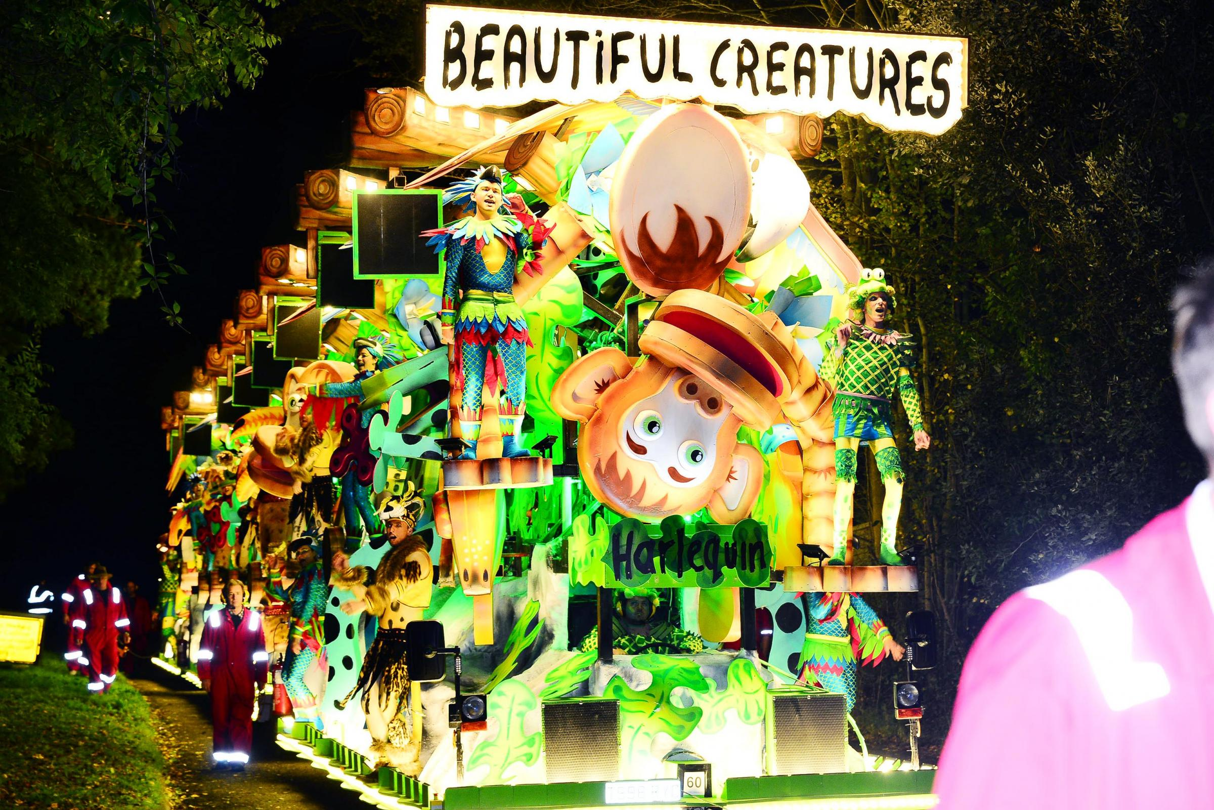 One of last year's entries to Ilminster Carnival