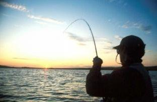 ANGLING: Round four for anglers