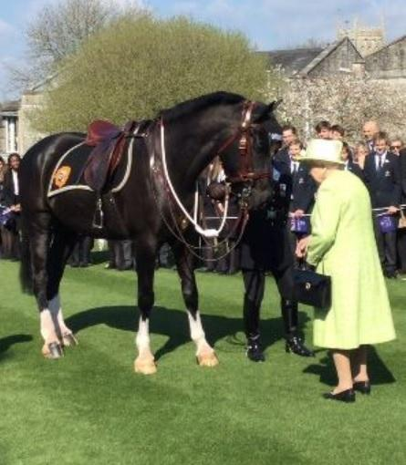 Police pic; Queen names police horse Windsor during visit to Burton, Somerset, March 28, 2019